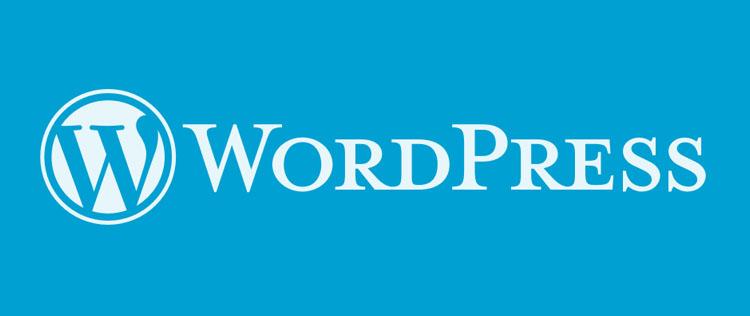 WordPress'teki Tema Sorunu